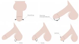 Tipos de piercing en el pene